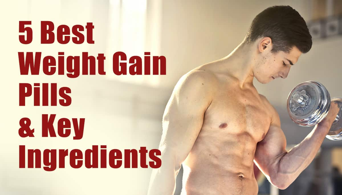 5 Best weight Gain Pills & Key Ingredietns
