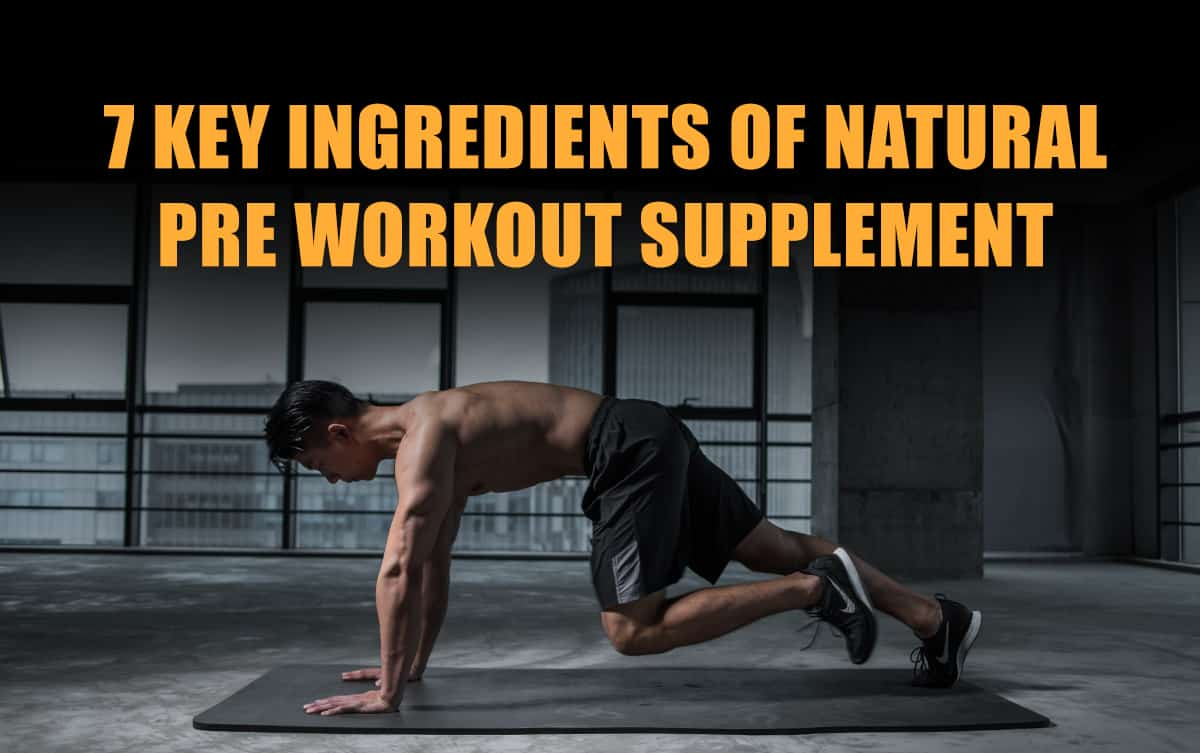 Ingredients of Natural Pre Workout Supplement